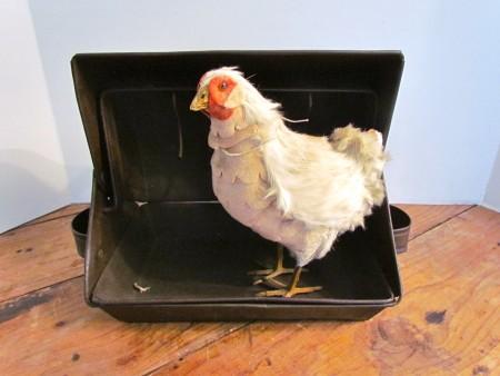 The Best Small Fowl 19th. century Tin Roaster/Tin Kitchen