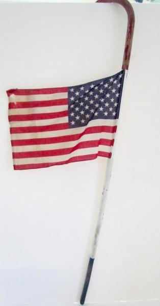 Patriotic Parade Cane with Flag