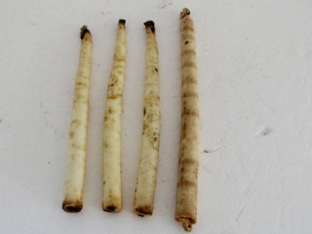 4 Early Tallow Candles